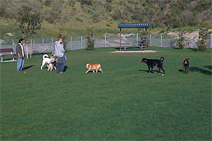 Simi Valley Dog Park Located in the Big Sky Lost Canyons developments