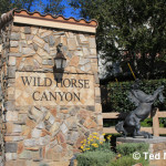 Simi Valley Wild Horse Canyon