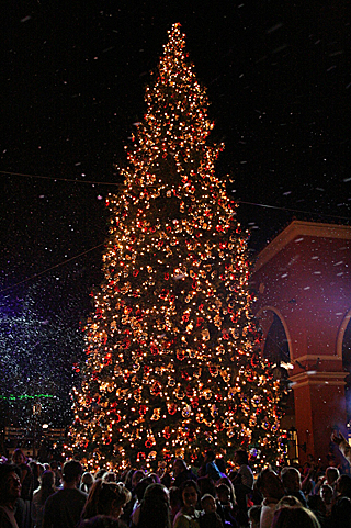 Simi Valley Town Center Lights the Christmas Tree ...